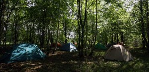 """Проживание в палатках на """"АстроФесте"""""""