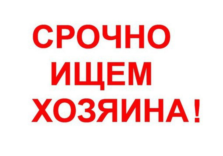 723e34d70358851da7736351131d1678